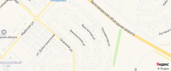 Брусничный переулок на карте Новосадового поселка Белгородской области с номерами домов