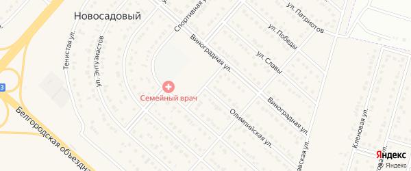 Спортивный переулок на карте Новосадового поселка Белгородской области с номерами домов