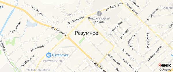 СТ Вишенка на карте поселка Разумного с номерами домов