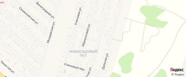Абрикосовый переулок на карте Новосадового поселка Белгородской области с номерами домов
