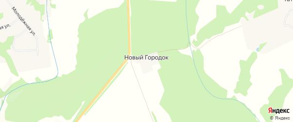 Карта поселка Нового Городка в Тульской области с улицами и номерами домов