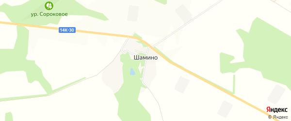 Карта поселка Шамино в Белгородской области с улицами и номерами домов