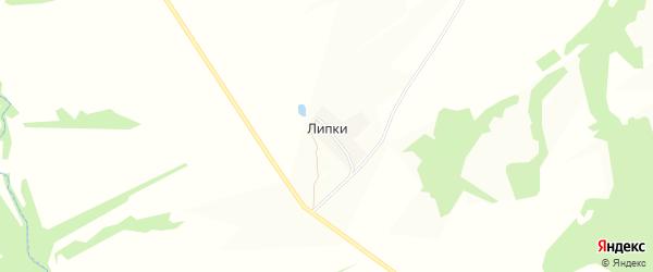 Карта деревни Липки в Тульской области с улицами и номерами домов