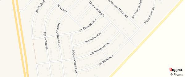Вишневая улица на карте поселка Маслова Пристани Белгородской области с номерами домов