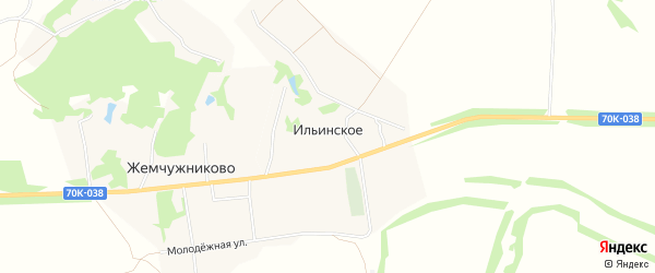 Карта деревни Ильинского в Тульской области с улицами и номерами домов