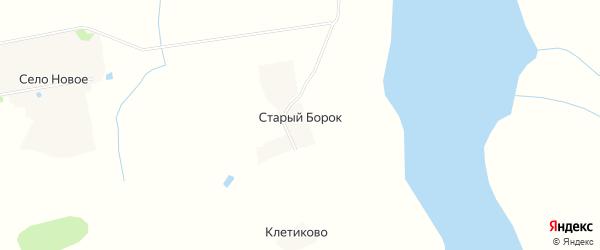 Карта деревни Старого Борка в Тверской области с улицами и номерами домов
