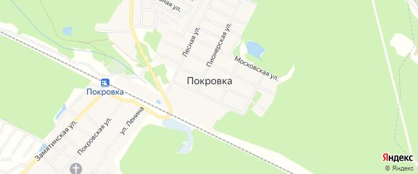 Территория СНТ Метрополитеновец на карте деревни Покровки Московской области с номерами домов