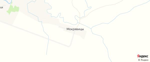 Карта деревни Мокрявицы в Тверской области с улицами и номерами домов