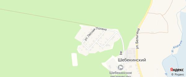 Улица Бельгина на карте Шебекинского поселка Белгородской области с номерами домов