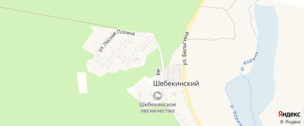 Подлесная улица на карте Шебекинского поселка Белгородской области с номерами домов