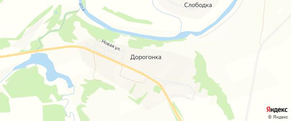 Карта деревни Дорогонки в Тульской области с улицами и номерами домов