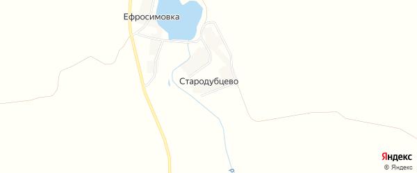 Карта деревни Стародубцево в Курской области с улицами и номерами домов