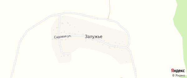 Садовая улица на карте деревни Залужье Калужской области с номерами домов