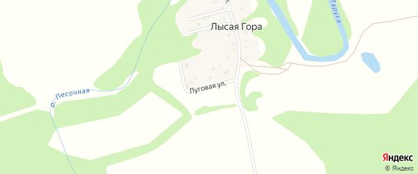 Луговая улица на карте села Лысой Гора Калужской области с номерами домов