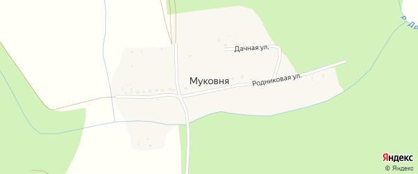 Луговая улица на карте деревни Муковня Калужской области с номерами домов