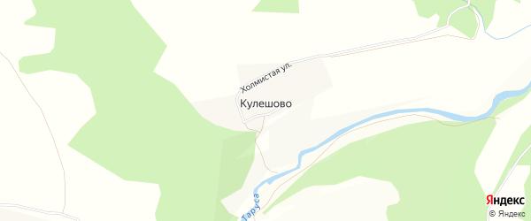Карта деревни Кулешово в Калужской области с улицами и номерами домов