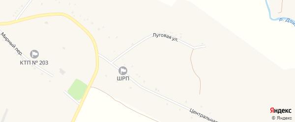 Центральный переулок на карте села Радьковки с номерами домов