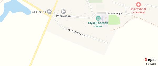 Молодежная улица на карте села Радьковки с номерами домов