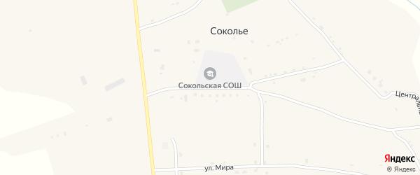 Школьная улица на карте села Сокольего Курской области с номерами домов