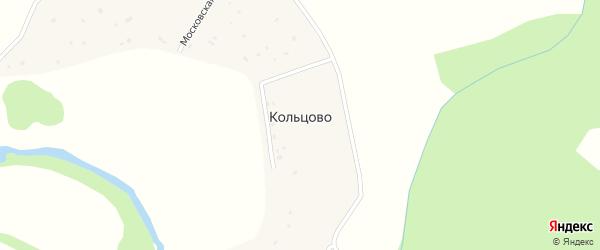 Цветочная улица на карте деревни Кольцово Калужской области с номерами домов