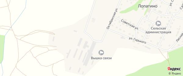 Животноводческая улица на карте села Лопатино Калужской области с номерами домов