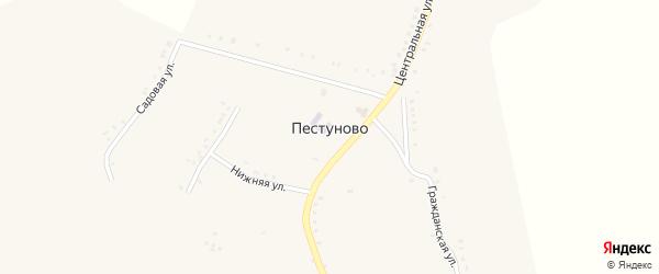 Нижняя улица на карте села Пестуново Белгородской области с номерами домов