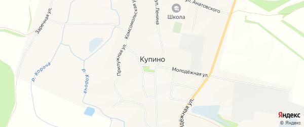 Карта села Купино в Белгородской области с улицами и номерами домов
