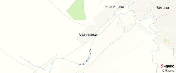 Карта деревни Ефимовки в Тульской области с улицами и номерами домов