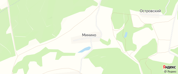 Карта деревни Минино в Тульской области с улицами и номерами домов