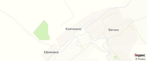 Карта деревни Княгинино в Тульской области с улицами и номерами домов