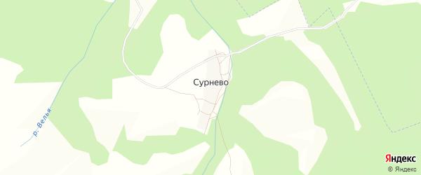 Карта деревни Сурнево в Калужской области с улицами и номерами домов