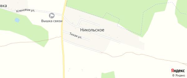 Центральная улица на карте деревни Никольского Калужской области с номерами домов