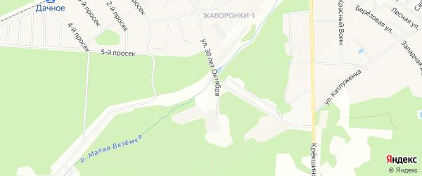 Территория СНТ Имени 40 лет Октября на карте Одинцово Московской области с номерами домов