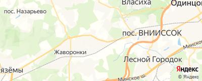 Якшин Александр Михайлович, адрес работы: Московская обл, г Одинцово, с Перхушково