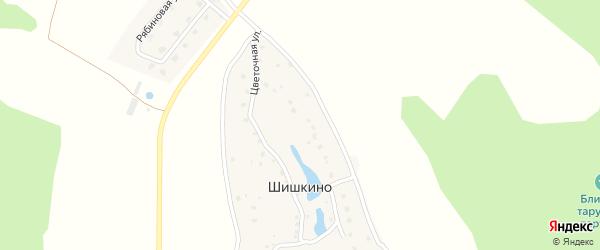 Цветочная улица на карте деревни Шишкино Калужской области с номерами домов