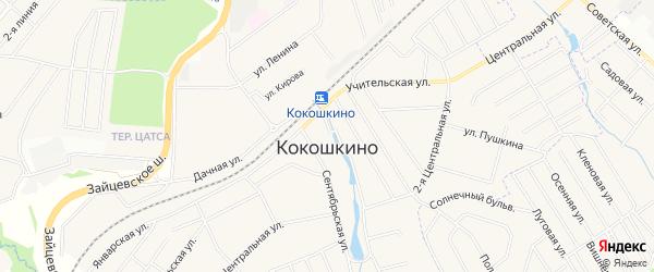 Территория СНТ Химик-1 на карте поселка Кокошкино с номерами домов