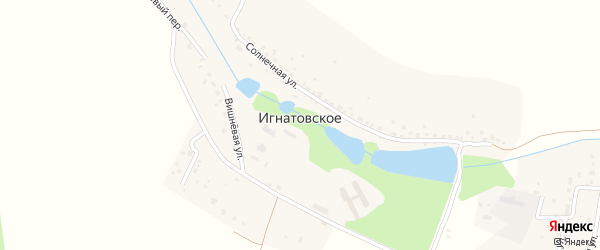 Весенняя улица на карте деревни Игнатовского Калужской области с номерами домов