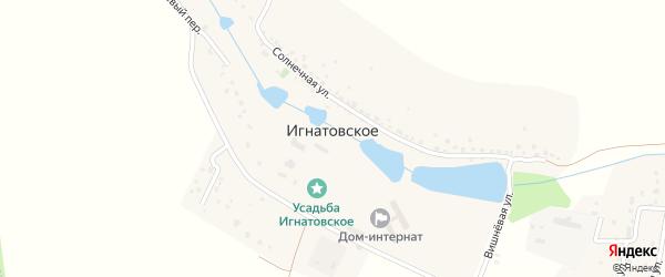 Солнечный переулок на карте деревни Игнатовского Калужской области с номерами домов