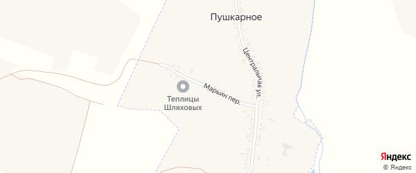 Переулок Марьин на карте Пушкарного села Белгородской области с номерами домов