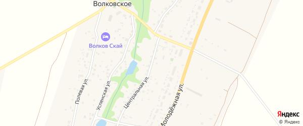 Центральная улица на карте Волковского села Калужской области с номерами домов
