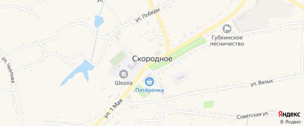 Комсомольский переулок на карте Скородного села с номерами домов