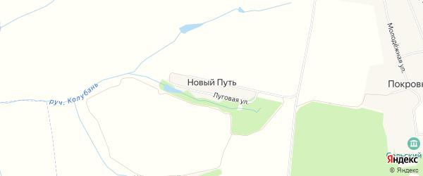 Карта поселка Нового Пути в Орловской области с улицами и номерами домов