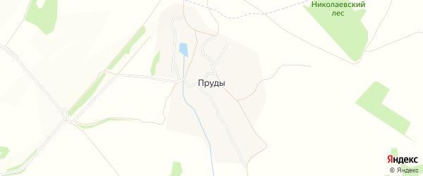 Карта села Пруды в Тульской области с улицами и номерами домов