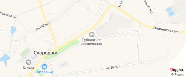 Пионерская улица на карте Скородного села с номерами домов