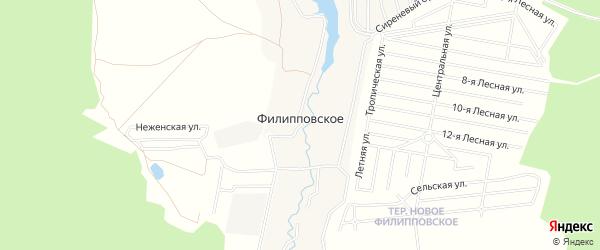 Карта деревни Филипповского города Чехов в Московской области с улицами и номерами домов