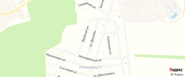 Улица Дружбы на карте территории ТСН Ромашкино-2 с номерами домов