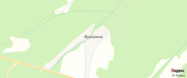 Карта деревни Воронино в Московской области с улицами и номерами домов