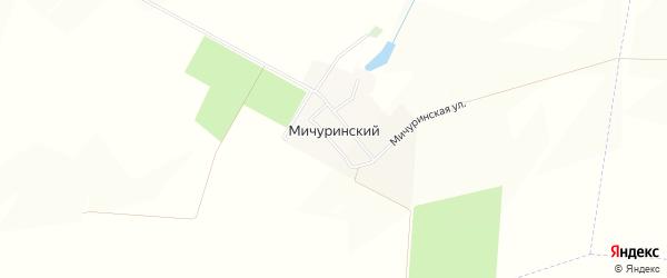 Карта Мичуринского поселка в Белгородской области с улицами и номерами домов
