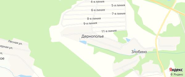 Карта деревни Дернополья в Московской области с улицами и номерами домов