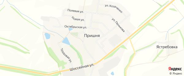 Карта села Пришни в Тульской области с улицами и номерами домов
